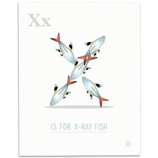 ABC-Animal-Alphabet-Print-X-Mark-Bird-Illustration